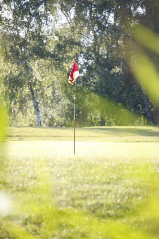golfclub red golf moorfleet hamburg german golf guide. Black Bedroom Furniture Sets. Home Design Ideas