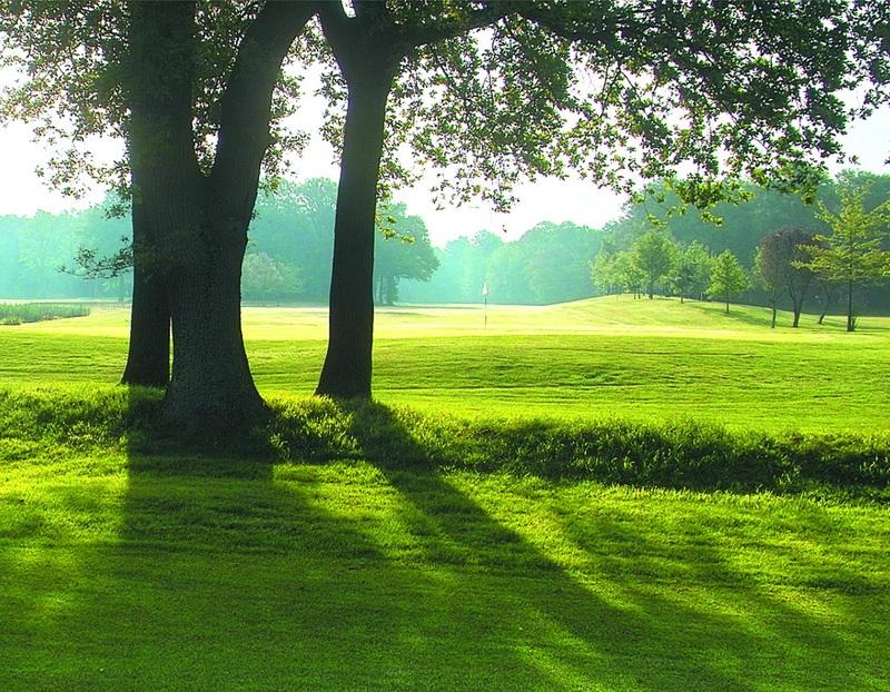 oldenburgischer golfclub rastede niedersachsen german golf guide. Black Bedroom Furniture Sets. Home Design Ideas