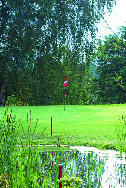 golfclub rhein sieg pleiser h gelland hennef german golf guide. Black Bedroom Furniture Sets. Home Design Ideas