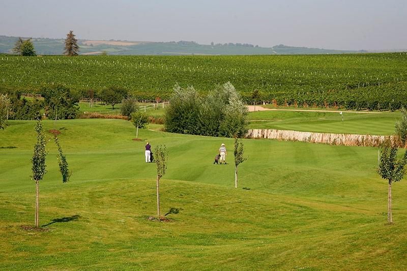 golfgarten deutsche weinstra e golf absolute dackenheim. Black Bedroom Furniture Sets. Home Design Ideas